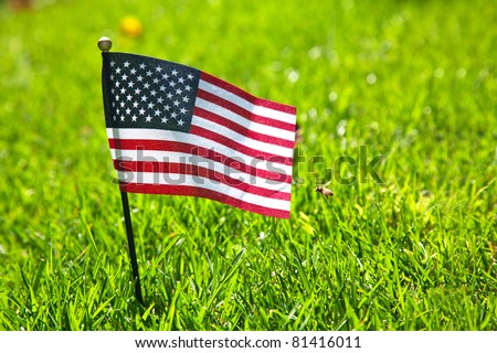 Small american flag on the green grass