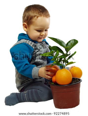 small baby boy playing with orange fruits and plant, isolated on white