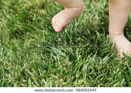 Small baby feet on the green grass. Feet of little kid staying on green grass outdoors. Kids bare legs standing on grass. First steps. Baby standing barefoot on the green lawn
