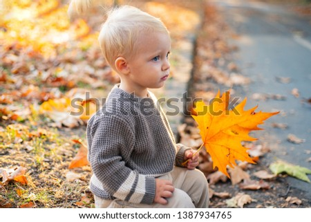Small baby toddler on sunny autumn day. Warmth and coziness. Happy childhood. Sweet childhood memories. Child autumn leaves background. Warm moments of autumn. Toddler boy blue eyes enjoy autumn.
