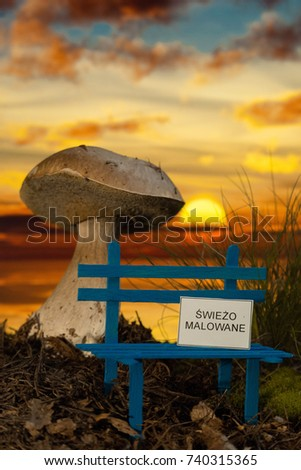 Small bench with wet paint and giant mushroom at sunset Zdjęcia stock ©
