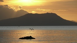 Small bird at the isolated rock in the middle of the sea against the backdrop of the volcano at the sunset time.