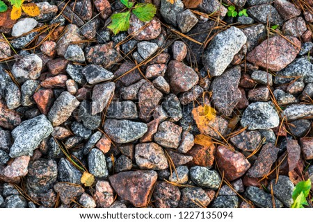 Small black, white and red pebble background with autumn yellow fall leaves. Top view of contrast gravel stone texture #1227135094