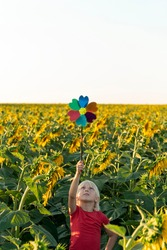 Small blond boy stands among field of sunflowers with windmill toy. Raised above his head. Happy childhood.