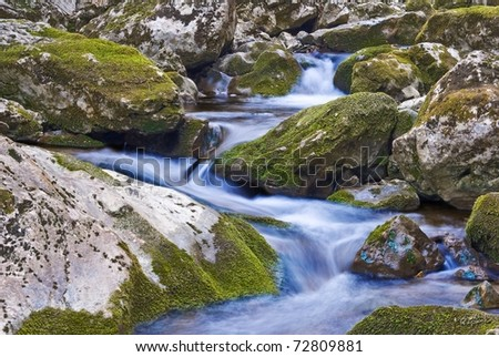 small blue spring - stock photo