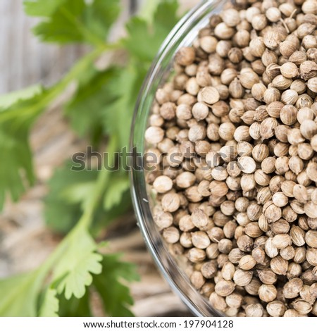 Small bowl with fresh Coriander Seeds (close-up shot)
