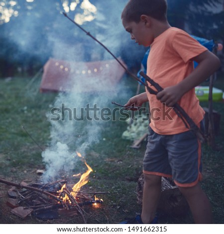 Small boy child making campfire on a lawn. #1491662315