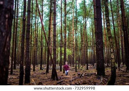 Small boy walking having an adventure outdoors in the woods forest #732959998