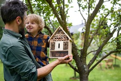 Small boy with father holding bug and insect hotel in garden, sustainable lifestyle.