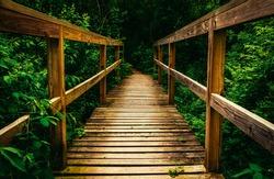 Small bridge on a trail in Codorus State Park, Pennsylvania.