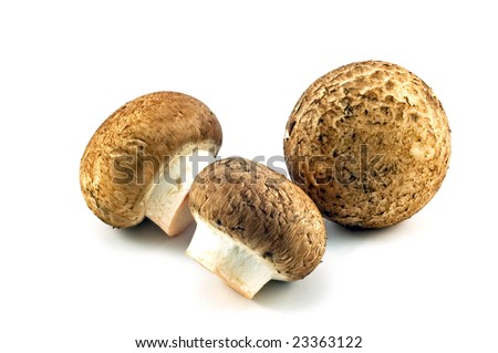 Small brown Italian or Crimini mushrooms isolated on white background