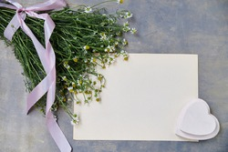 Small camomiles bouquet tied with pink ribbon and beige paper sheet on grey wooden table. Natural background picture of wild flowers. Ecological texture for poems, letters, romantic notes.