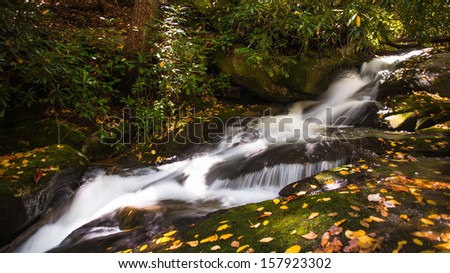 Small cascade by the trail with leaves scattered in the autumn landscape.