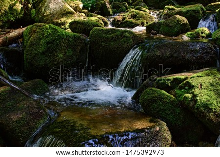 Small cascade on a mountain stream, Cold stream between mossy rocks, Water flowing around moss covered rocks, Retezat mountains, Romania