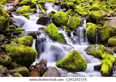Small cascade over mossy rocks, Sol Duc Falls, Olympic National Park, Washington, USA