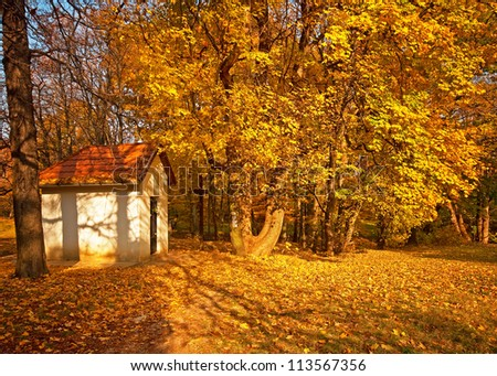 Small chapel in the forest