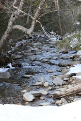 small cold swift winter river running over rocks and snow along edges with trees alongside edges of river cold winter stream running through woods