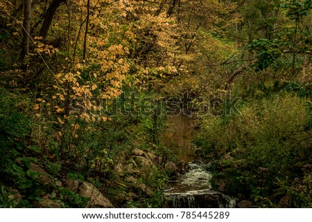 small creek flowing calmly from ...