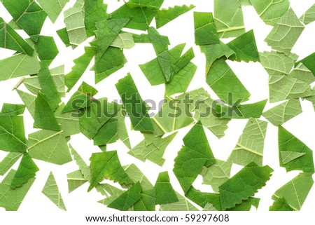 Small cut isolated slices of leaves abstract background