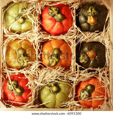 Small decorative pumpkins in wooden box
