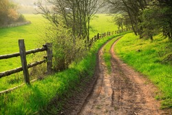 Small Dirt Road through Green Fields, Spring Landscape