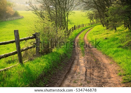 Small Dirt Road through Green Fields, Spring Landscape #534746878