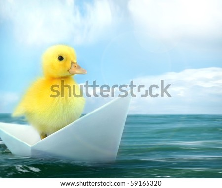 small duck  travelling by origami paper boat floating in a sea