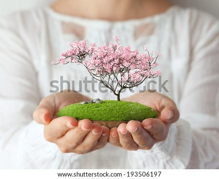 Small fantastic island with pink tree in women's hands Sakura