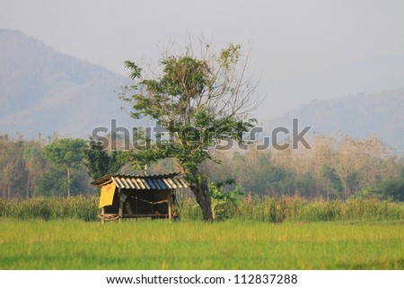 Small farm house in thailand