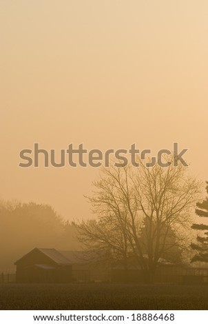 Small Farm in Morning Fog