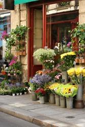 Small flower shop
