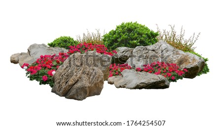 Small garden consists of stone bush and flowers with isolated background stock photo