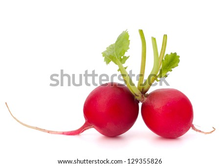Small garden radish isolated on white background cutout