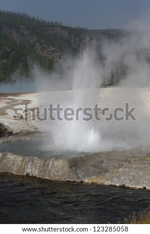 Small geyser in Yellowstone National Park