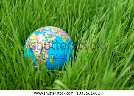 Small globe in the grass. Travel and global issues concept.