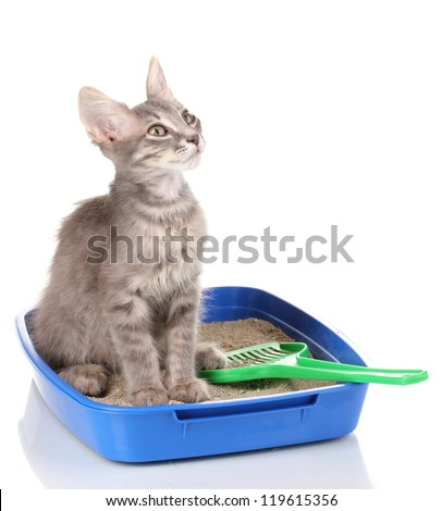 how to clean cat litter box funny