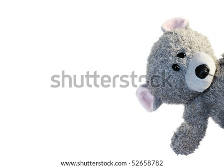 Small gray teddy bear against white background.