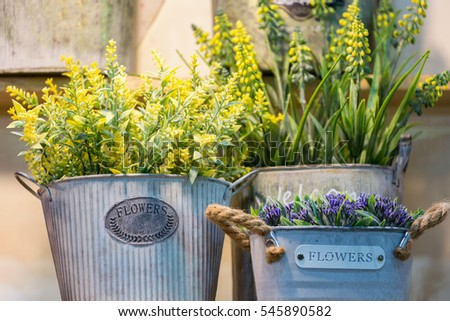Small green plants and flowers in vintage style tin cans. #545890582