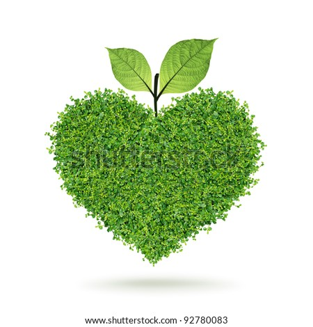 Small green plants heart and leaf in the happy Valentine's day
