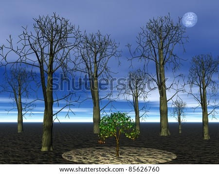Small green tree alive among big dead forest trees by night with full moon
