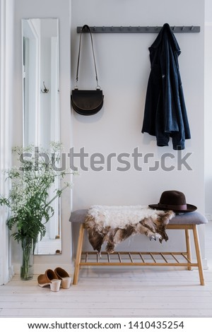 Small hallway in clean, modern interior Foto d'archivio ©