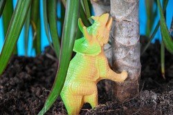 Small herbivorous dinosaur Triceratops under a palm tree, under a tree. The dinosaur is trying to climb a tree. Dinosaur model. Triceratops is an extinct animal of the Jurassic period, paleontologists