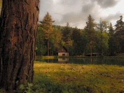 Small house in the forest near the lake. House reflected in the lake. Green grass and tree in the front plane.Serye clouds, rain going on lesom. As if drawn picture.