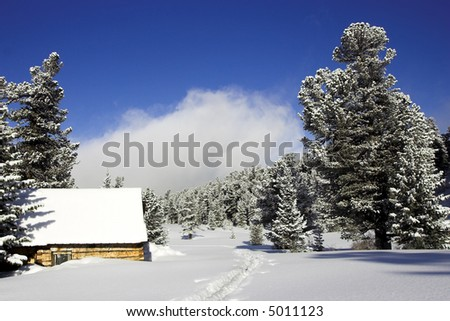 Small house in the winter forest with path near