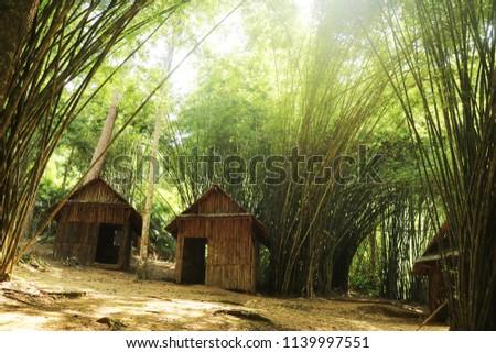 small hut in bamboo jungle                - Shutterstock ID 1139997551