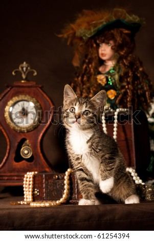 Small kitten sitting and looking curious against the brown background with the clock and vintage doll