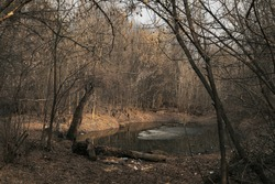 Small lake in the forest. Melting ice on the water. Flooded bare trees on the shore. Spillage of water. High water. Spring evening landscape.