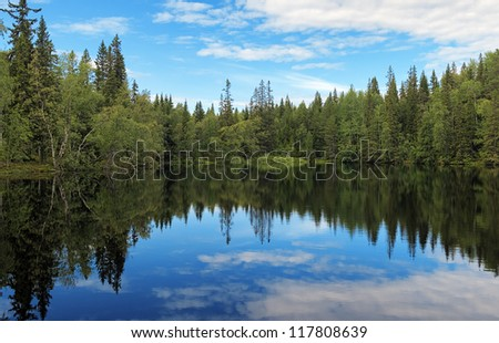 Small Lake in the forest on the Bolshoy Solovetsky Island in calm summer evening, Solovetsky archipelago, Russia