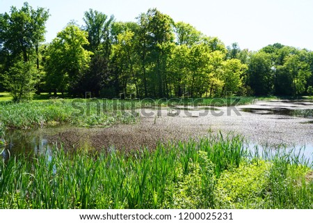 small lake near Radun castle as nice  moravia landscape #1200025231