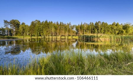 Small lake on golf course in deep forest, Poland